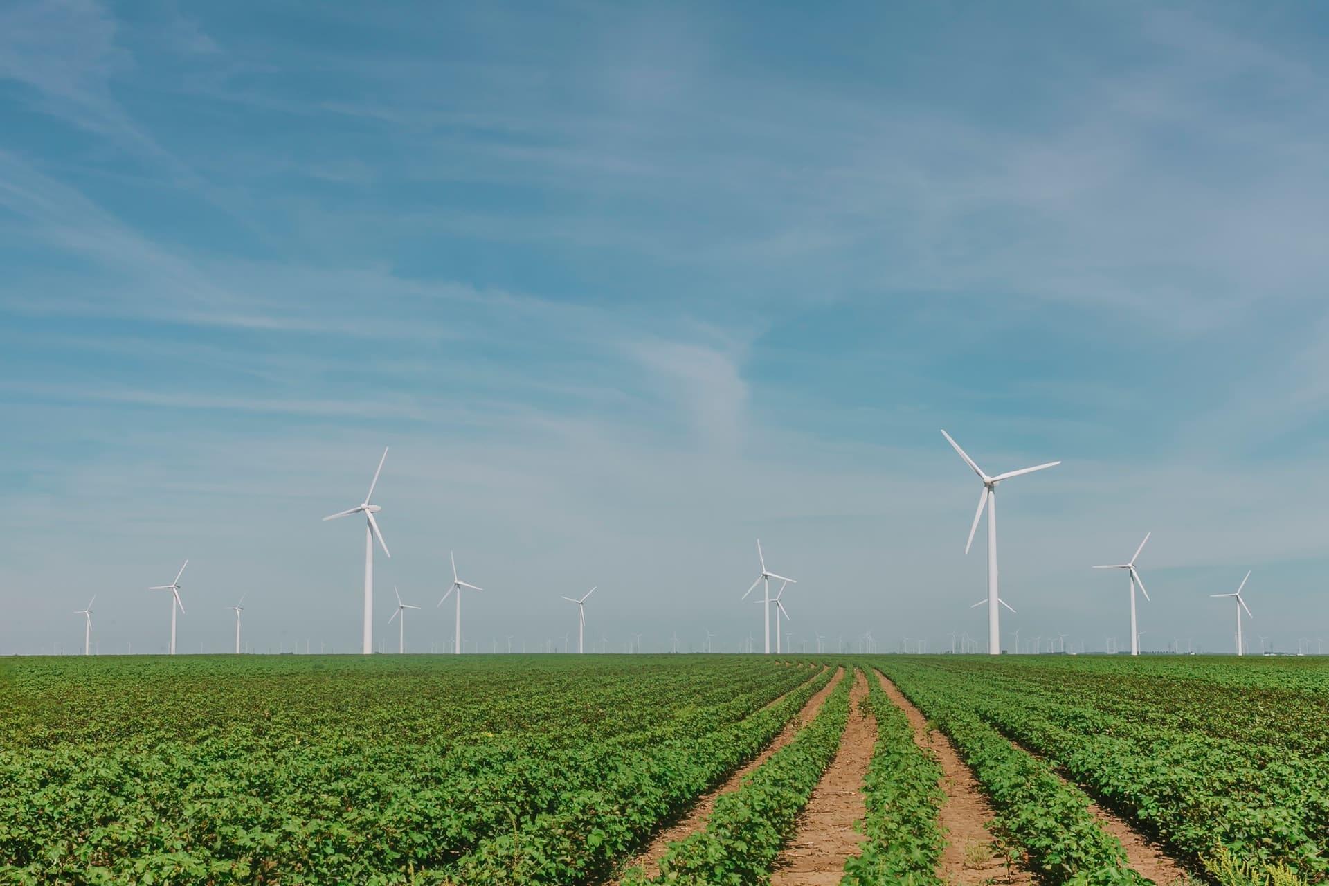 Vindkraft - vindkraftverk